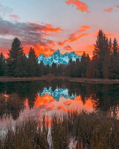 nature background images