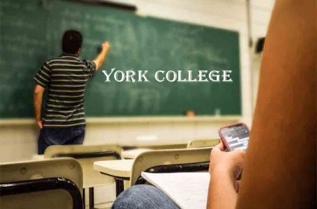 THE SAFETY AND SERVICES OF CAMPUS AT YORK COLLEGE